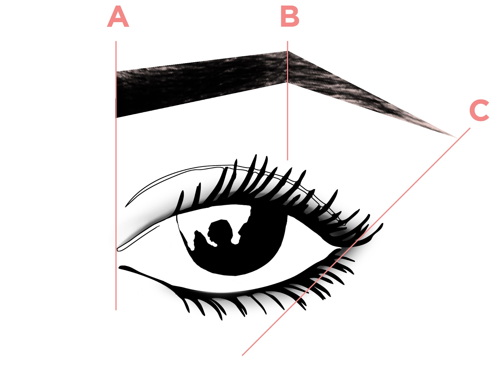 Your Guide To Creating The Perfect Brow
